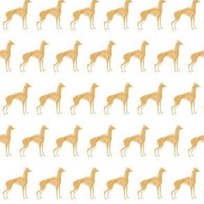 italian greyhound tan with 19 oil brush
