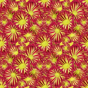 Flowers Red and Yellow Full