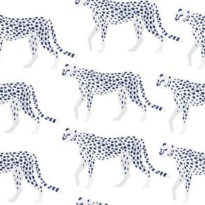 Snow Leopard, White Leopard, White Cheetah