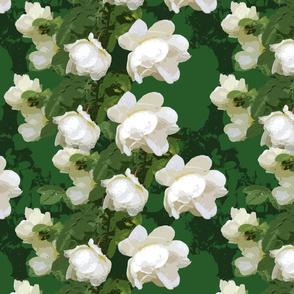 White Rose Multiple Dark Green
