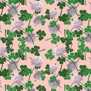 Cloverfield pink