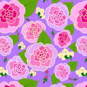 Putple Roses-01-01