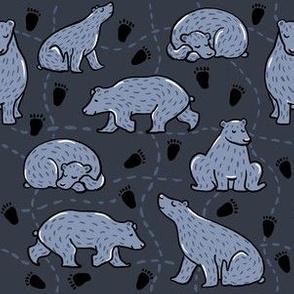 Little Bear Dark Grey
