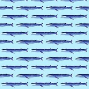 Blue Whale on light blue
