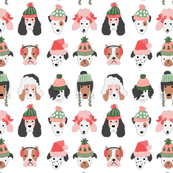 Puppy Dogs in Christmas Hats