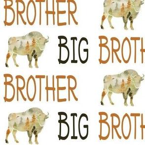 buffalo big brother