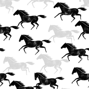 wild horses - black, grey, white - LAD19