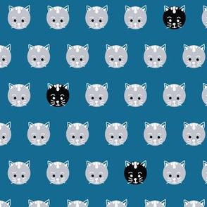 Polka Dot Kittens