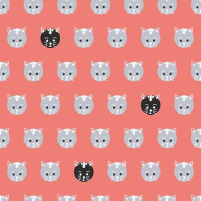 Cat Face Polka Dots