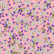 Little Daisies + Violets   Pink
