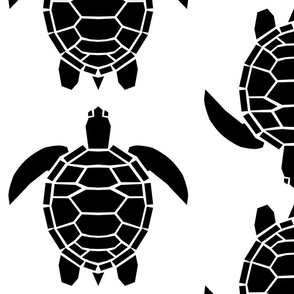 Jumbo Black Turtles on White