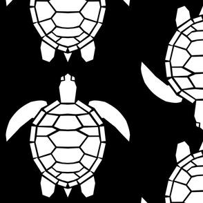 Jumbo White Turtles on Black