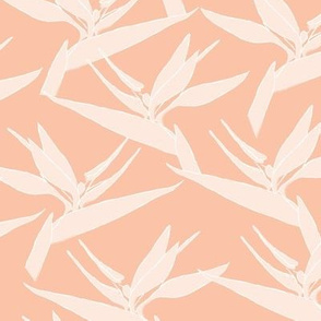 SMALL freehand birds of paradise - peach - small