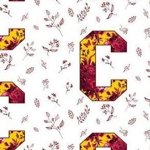 C is for Central Michigan