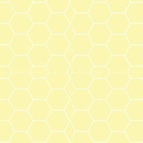 Field of Honey