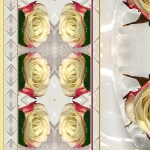 cream roses in ice white striped kaleidoscope large size