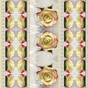 cream roses in ice white striped kaleidoscope medium size