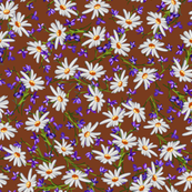 Little  Daisies + Violets | Brown