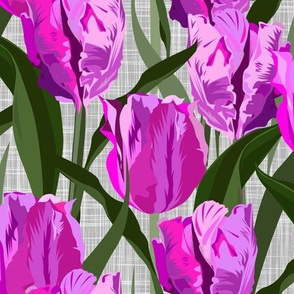 parrot tulips pink - large scale