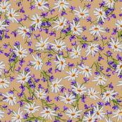 Little  Daisies + Violets   Golden Tan