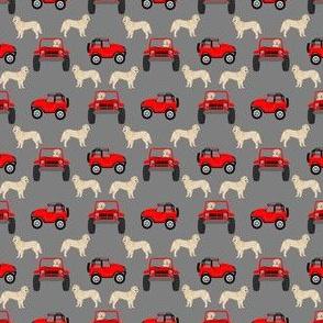 TINY - golden retriever dog outdoors person car fan fabric