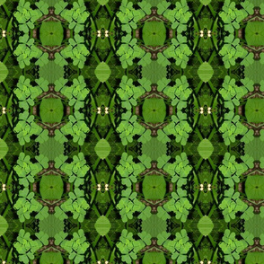 Geometric Shamrocks