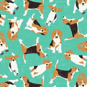 beagle scatter biscay green