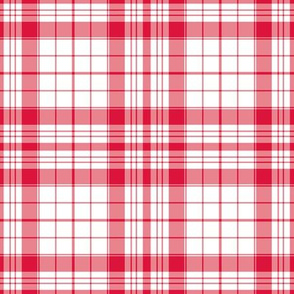Detroit Red Wings Plaid Team Colors Hockey Red White