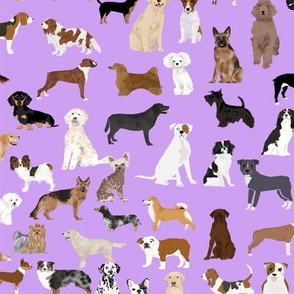 dogs cute dog purple dog fabric best dog breed design dog person fabric dog lovers fabric cute dog quilting fabric