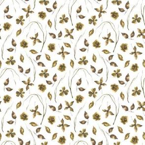 Floral / Herbarium