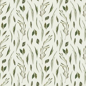 Leaf / Herbarium