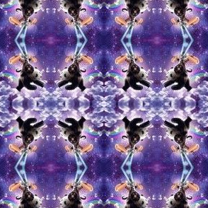 Lazer Warrior Space Cat Riding Panda With Hotdog