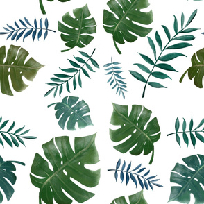 Green jungles leaves