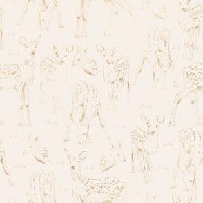 Deer / Modern Oasis