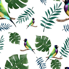 Jungle leaves and birds