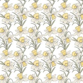 daffodils-03