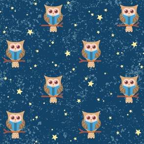 Owl Reading Under the Stars: Brown Owl Blue Background