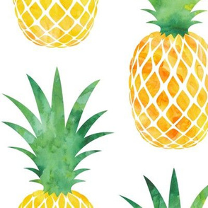 (jumbo scale) pineapples - watercolor C19BS