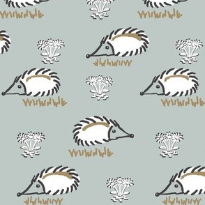 Happy lil Hedgehog /Grey