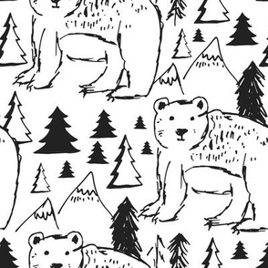 "8"" Baby Bear Sketch"