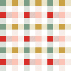 Christmas Rainbow Gingham C