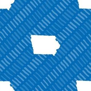 Iowa State Shape Stripes Blue and White