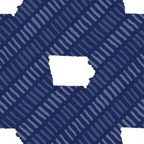 Iowa State Shape Stripes Dark Blue and White