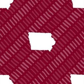 Iowa State Shape Stripes Garnet and White