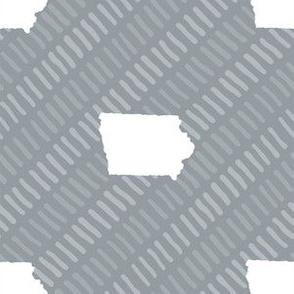 Iowa State Shape Stripes Grey and White