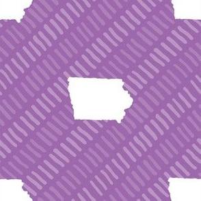 Iowa State Shape Stripes Purple and White