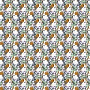 Small Floral Kooikerhondje portraits
