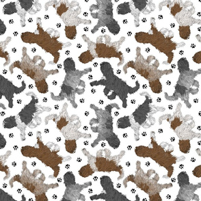 Trotting Schapendoes and paw prints - white