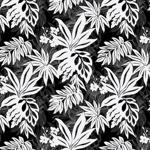 Black and White Tropical Leaves