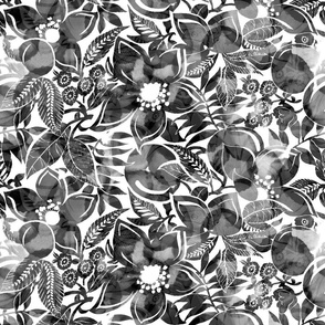 Black and White Sheer Tropical Flowers